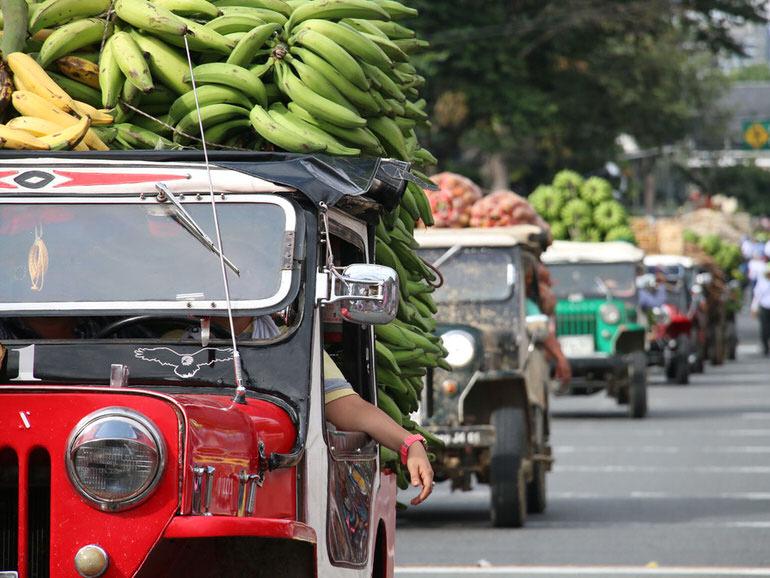 El desfile del Yipao, icono de la cultura Cafetera