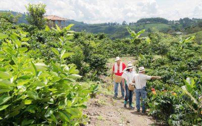 3 Motivos Para Viajar al Eje Cafetero de Colombia
